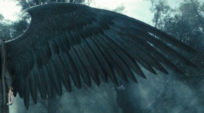 Close up of Maleficent's Adult Gray-Black Wings