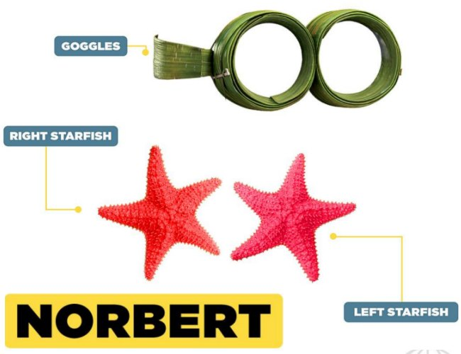 Norbert Costume Items