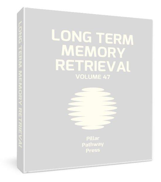 Long Term Memory Manual Mockup